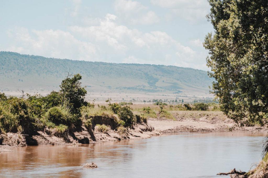 Tag 6 - Safari durch die Masai Mara 7